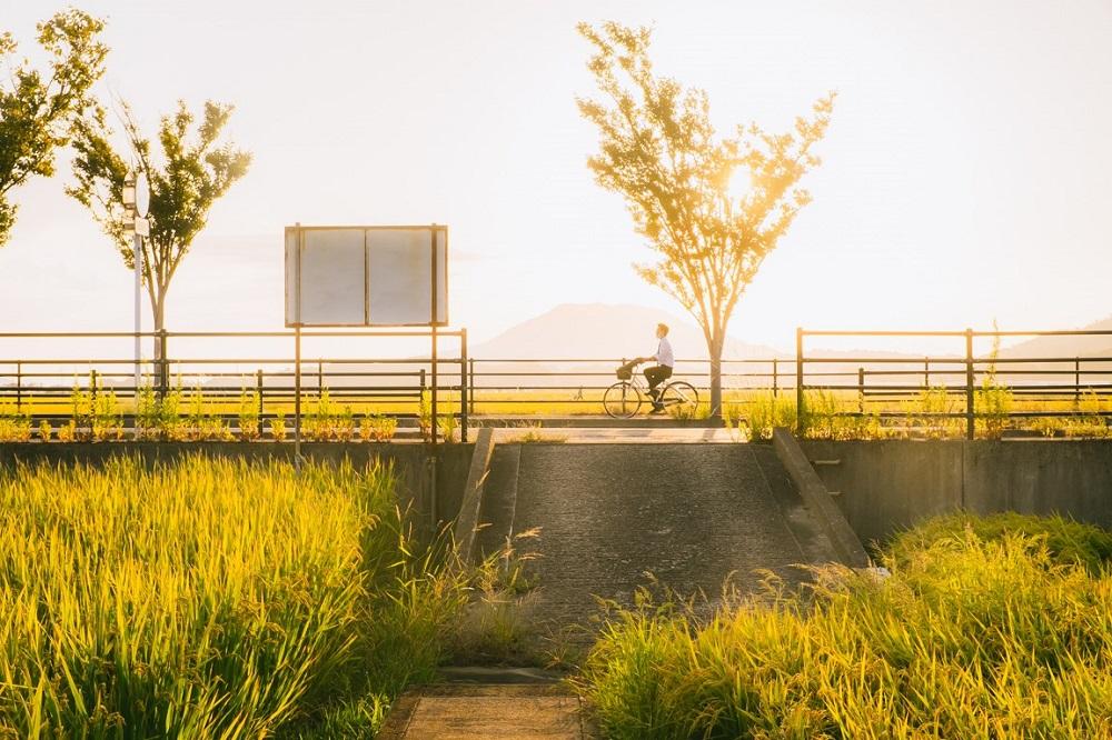 Nông thôn Nhật Bản - ảnh 15