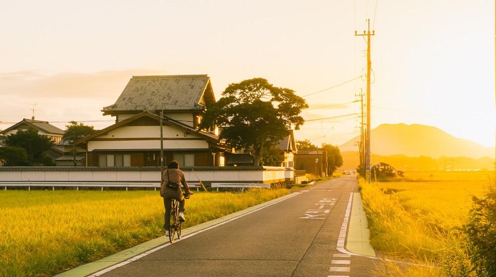 Nông thôn Nhật Bản - ảnh 16